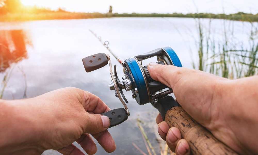 How to Find the Best Baitcasting Reel: Noeby Low Profile Baitcaster Review