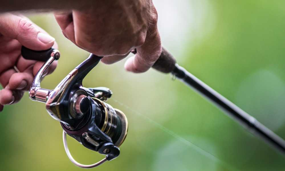 What is a Baitcasting Reel and How It Differs from a Spinning Reel